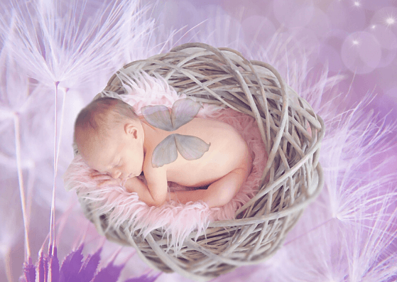 Nest-Baby Photography Props-Pune Prop Store